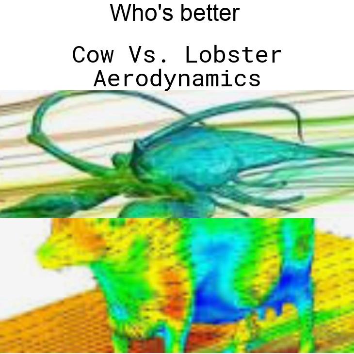 A fierce battle of the winds - meme