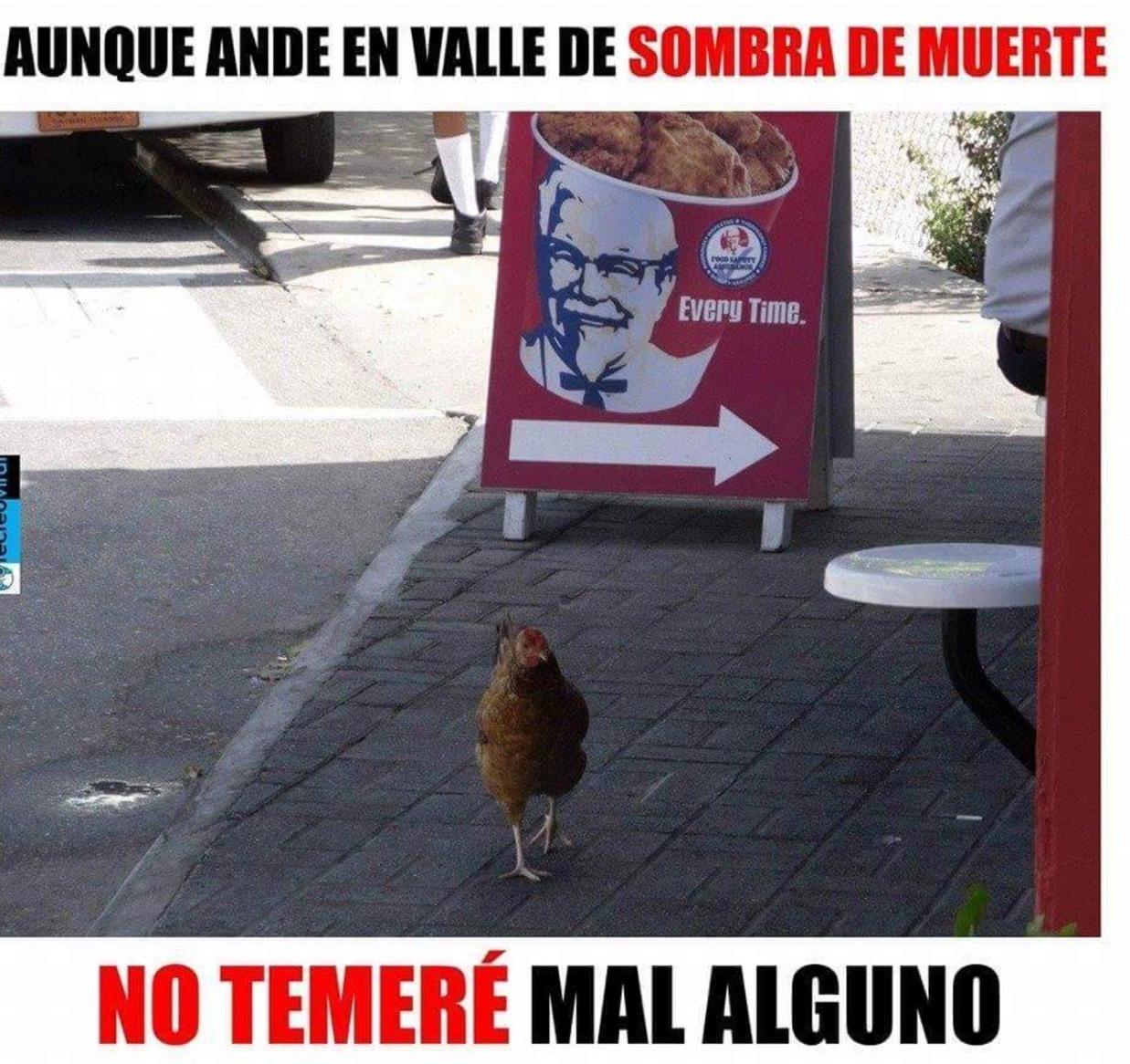el coronel es mi pastor - meme