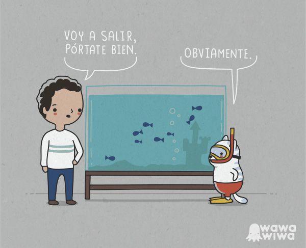 Pobres peces - meme