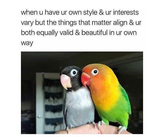 It is great when that happens - meme