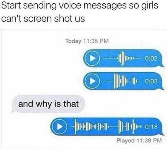 Send voice messages so they can't screenshot you - meme