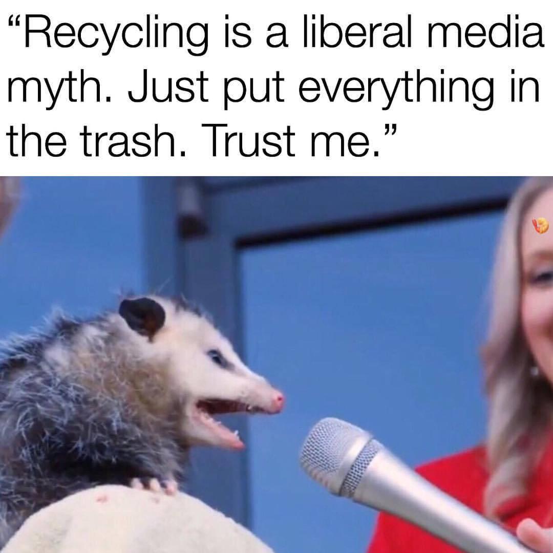 Fucking Libtards - meme