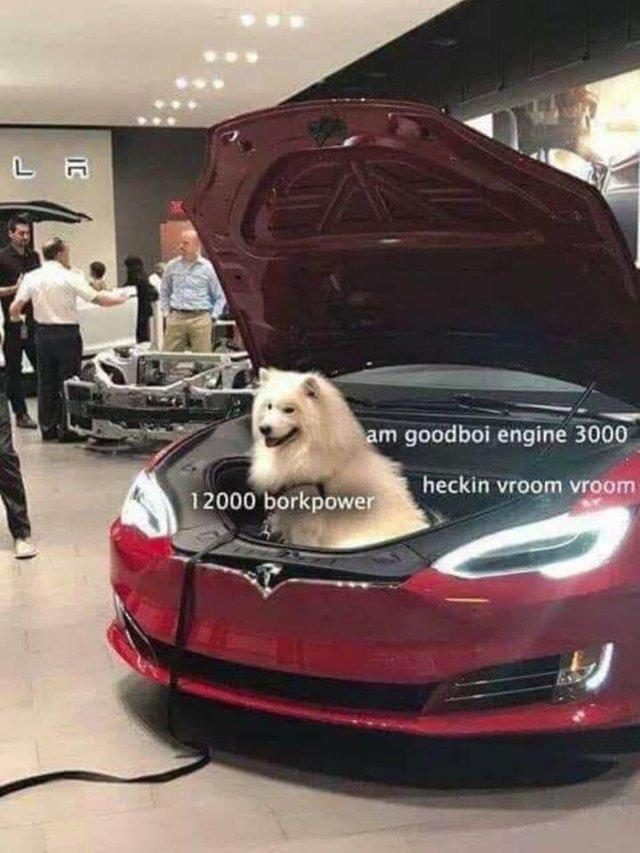 12000 borkpower - meme