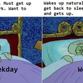 I just want to sleep in