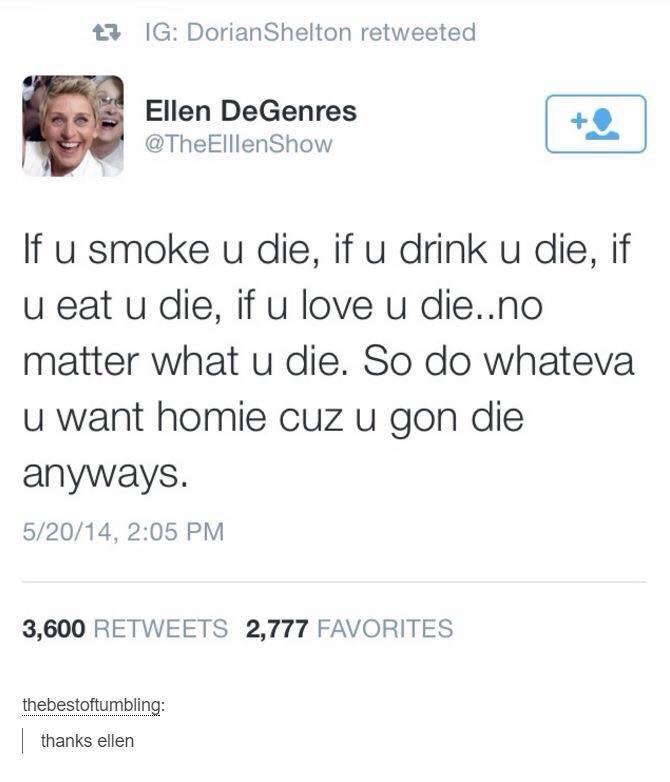 words of wisdom - meme