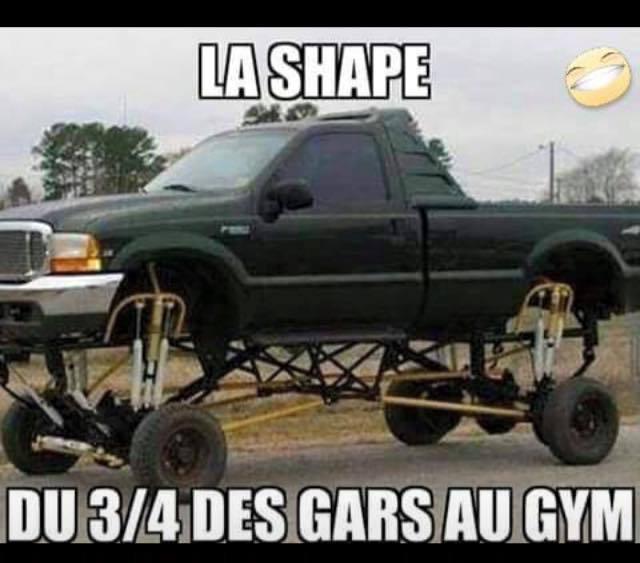 Shape = corp - meme