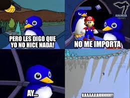 pinguino en el hoyo - meme