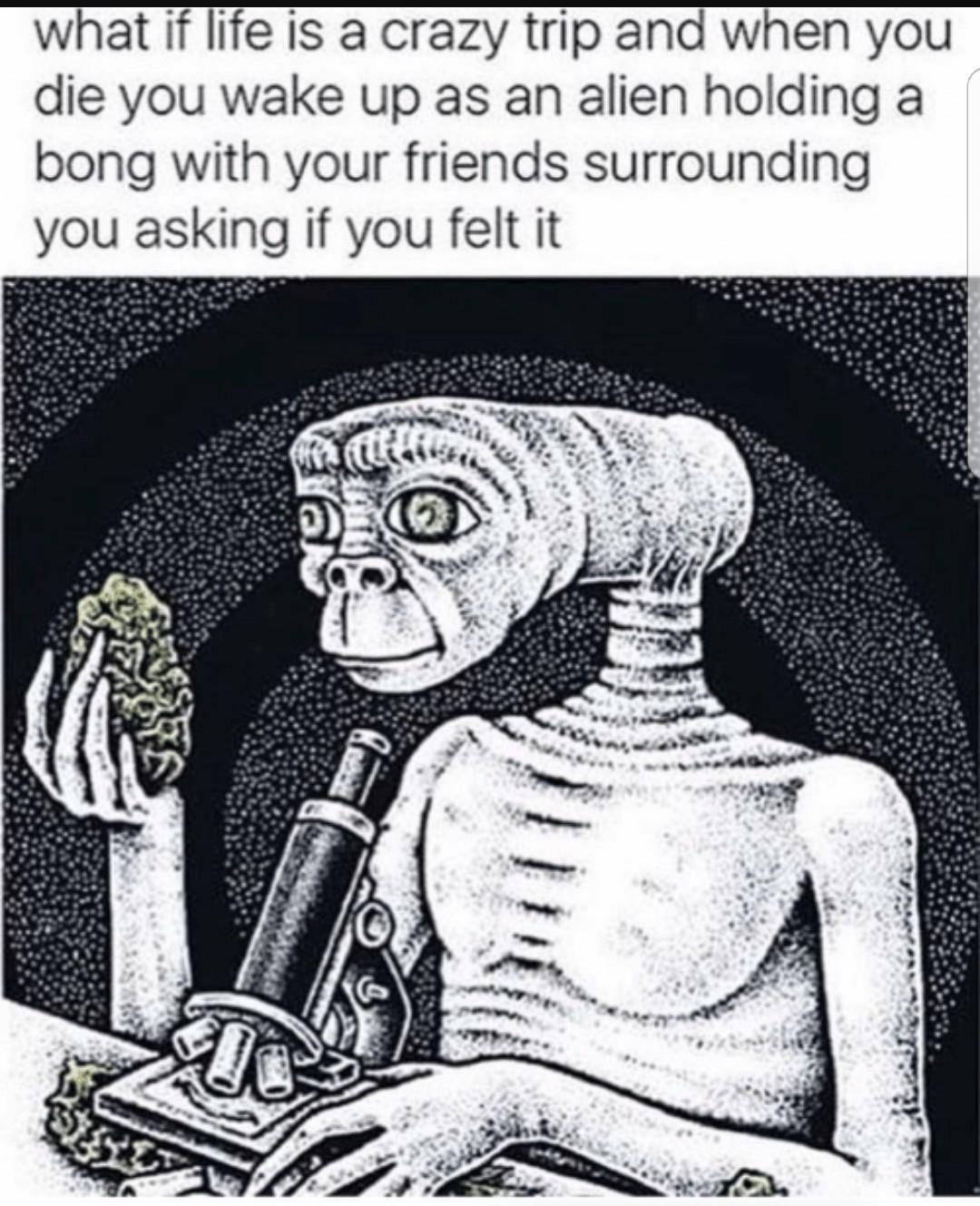 Yos - meme