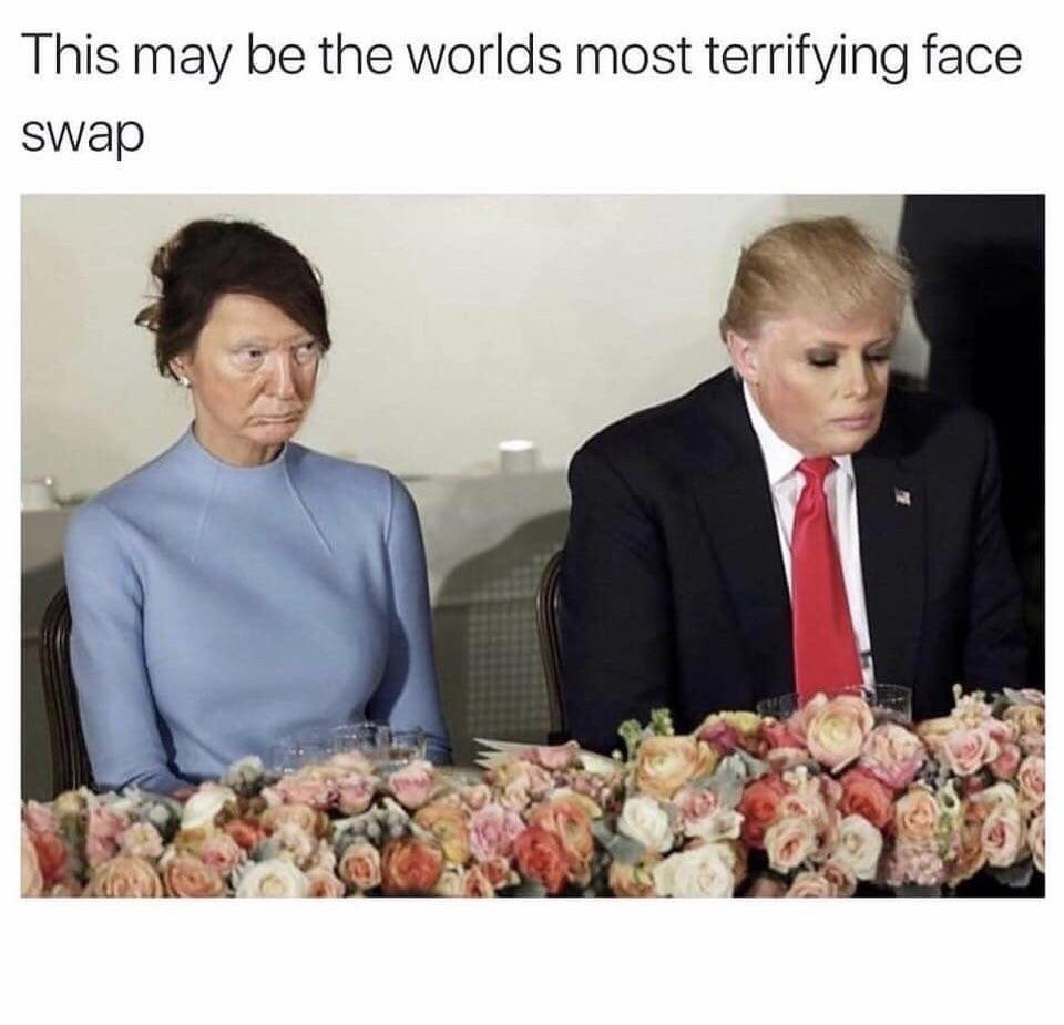 Trump face swap - meme