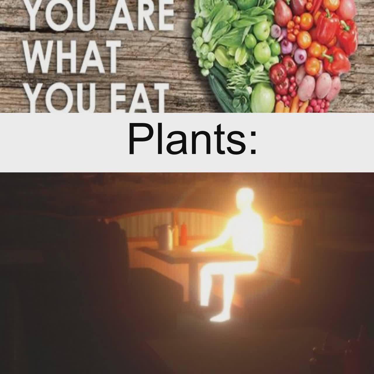 Plantboi - meme