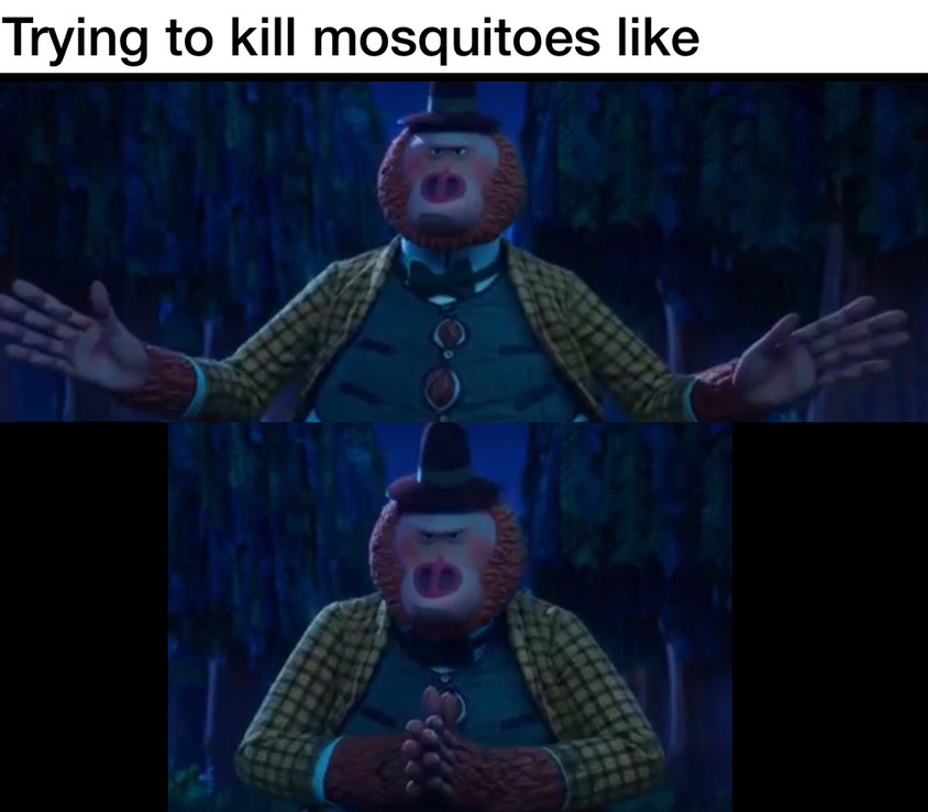 Killing them dang mosquitoes - meme