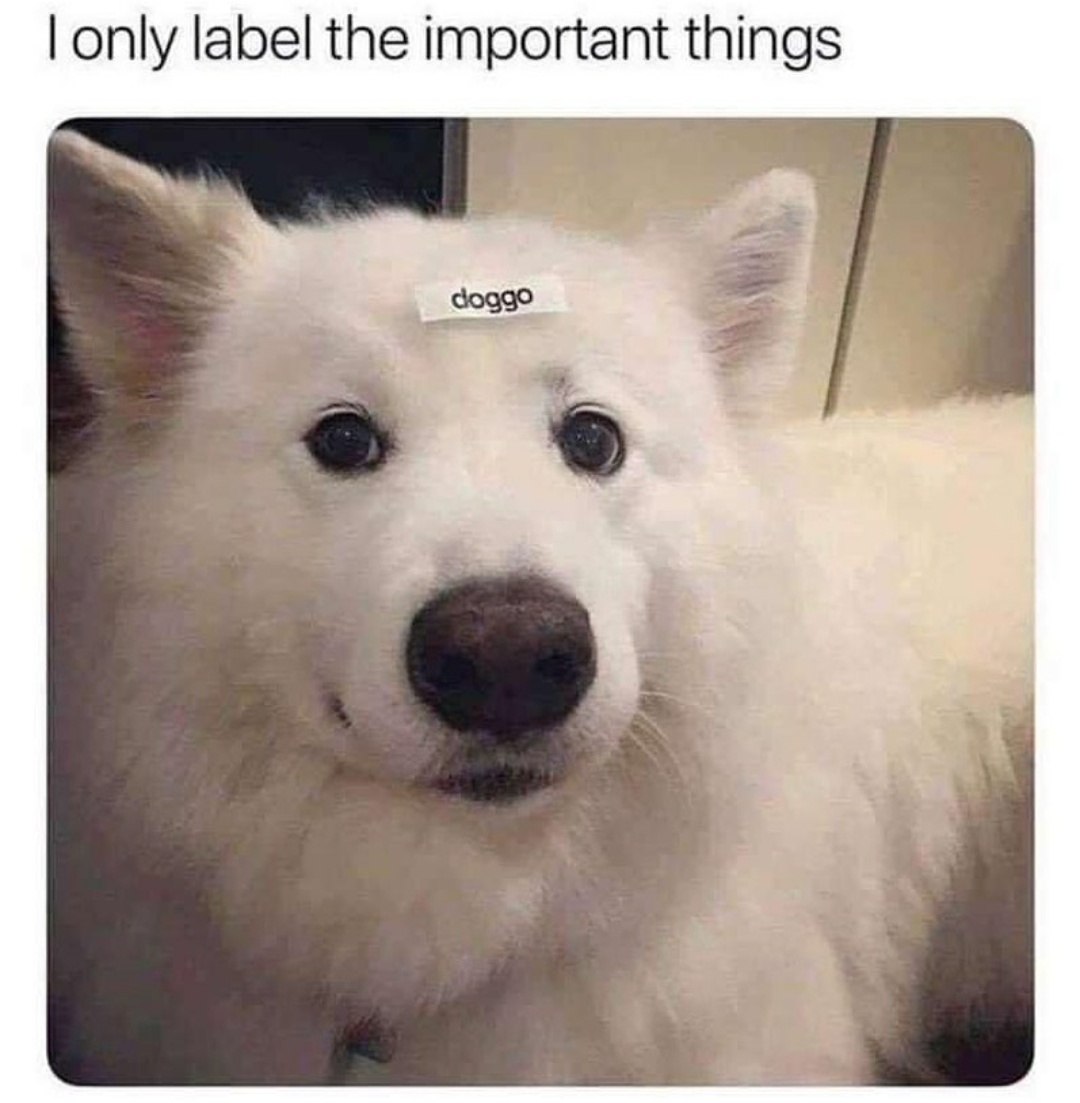 Fun with the labeler - meme