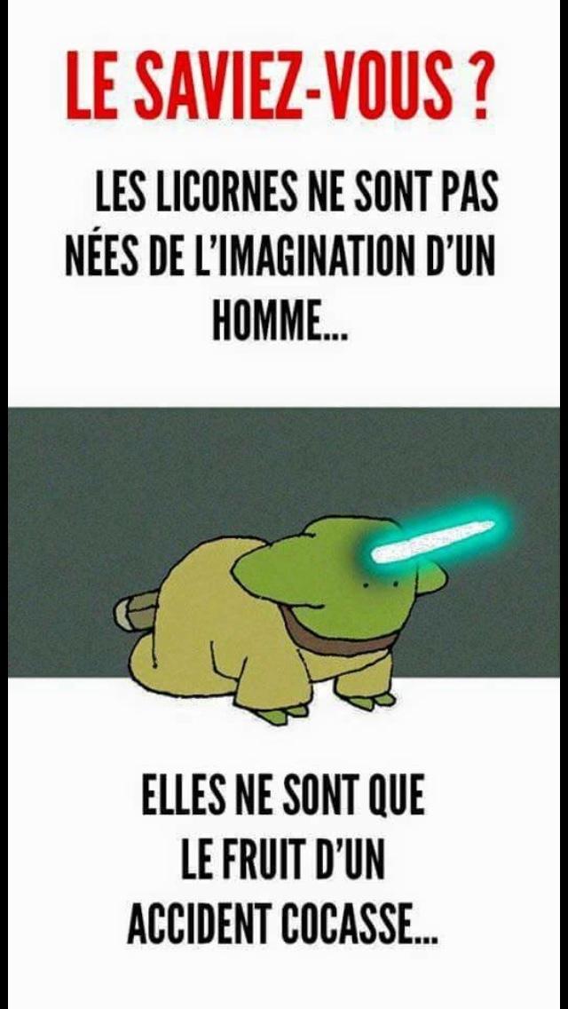 jolie licorne - meme