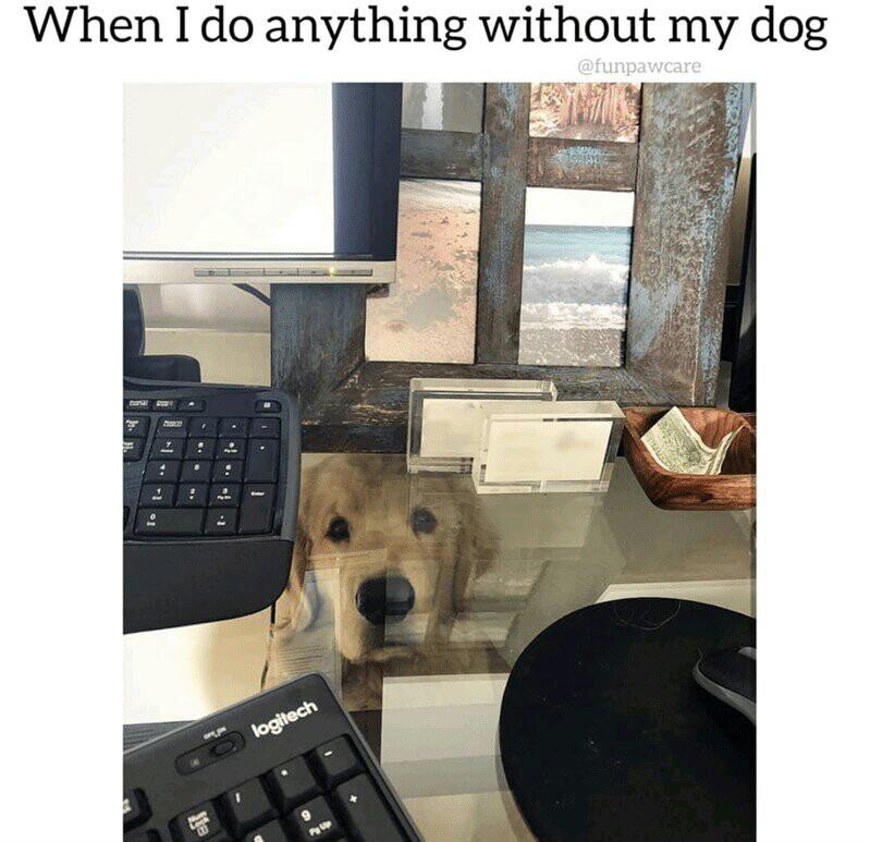 I will never work again! - meme