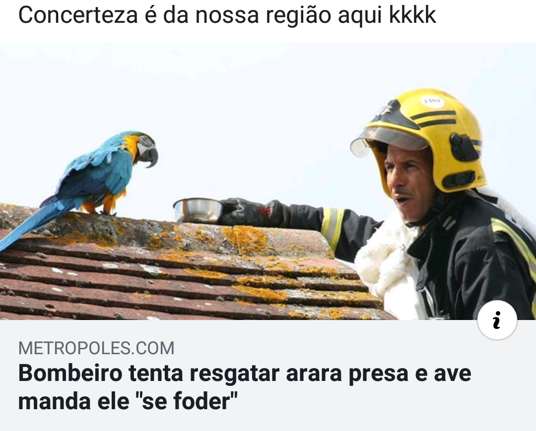 Só no Brasil tu vai ver isso - meme