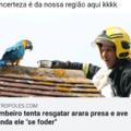 Só no Brasil tu vai ver isso