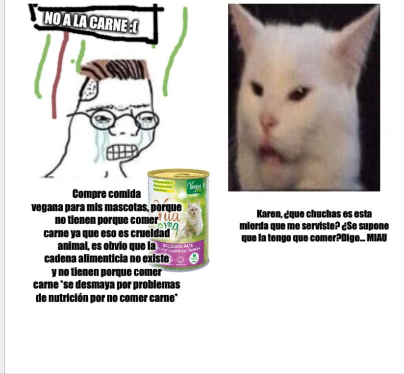 Lo mejor es que el gato de la  foto se hizo famoso  por no comer vegetales - meme
