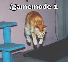 /gamemode creative - meme