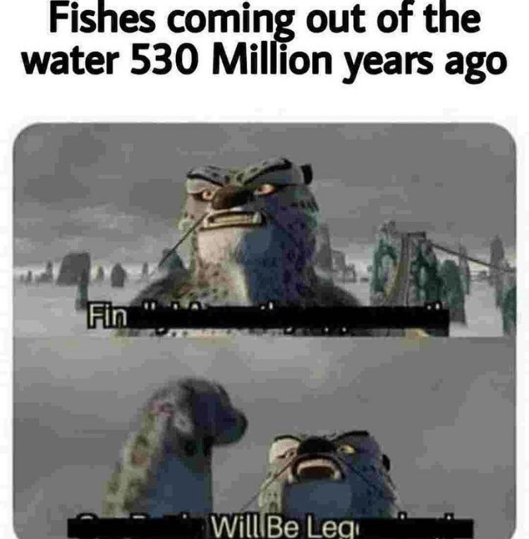 And amphibians were born - meme