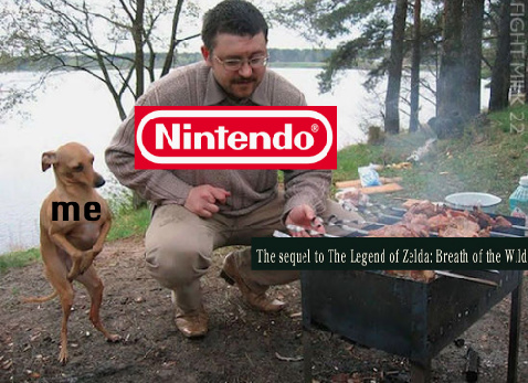 Me waiting for the new Zelda game - meme
