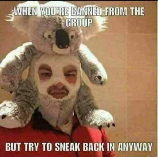Sneaky sneaky - meme