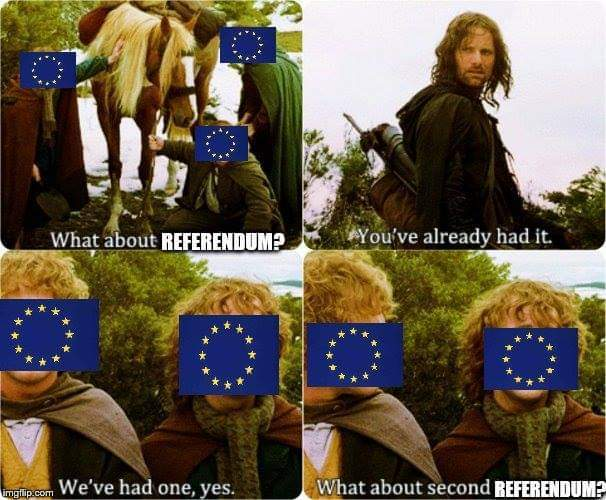 dongs in a referendum - meme