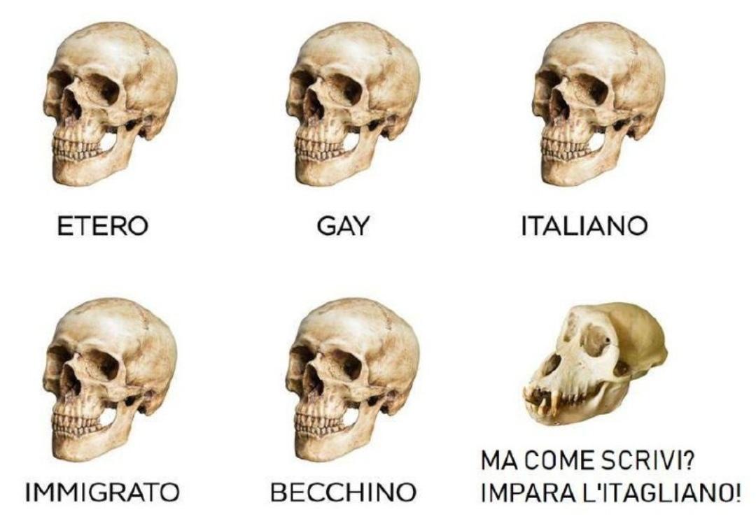 Bho - meme