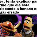 Ernie senpai não é neste buraco que é para colocar a banana