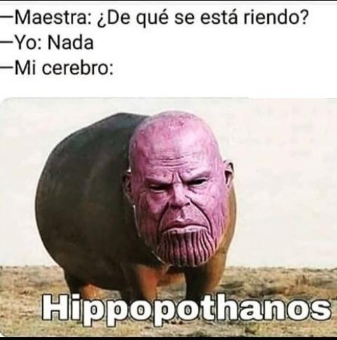 Bippopothanos - meme
