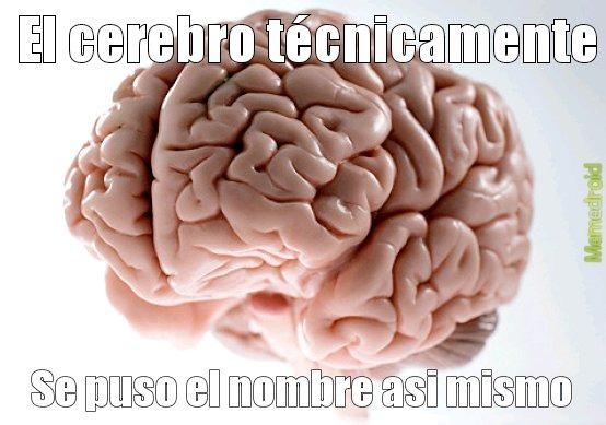 Ignora - meme