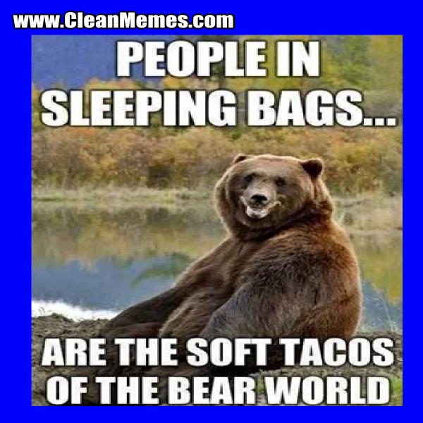 Bears world - meme