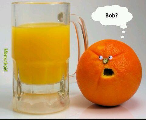 Bob... - meme