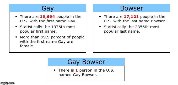 So long Gay Bowser - meme