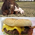 Vache + porc = burger