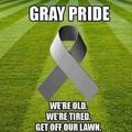 G(ra)y pride?