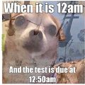 Forgot to do test