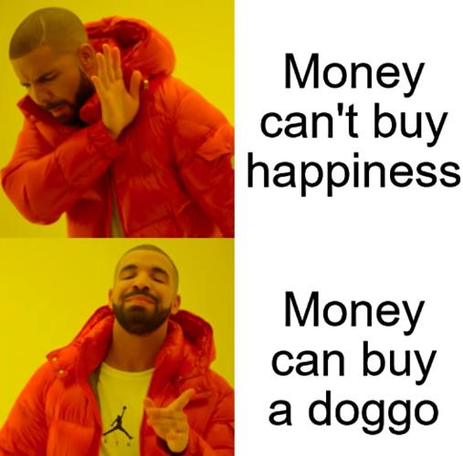 cant go wrong with a doggo - meme