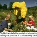 Big bird laying down the LAW