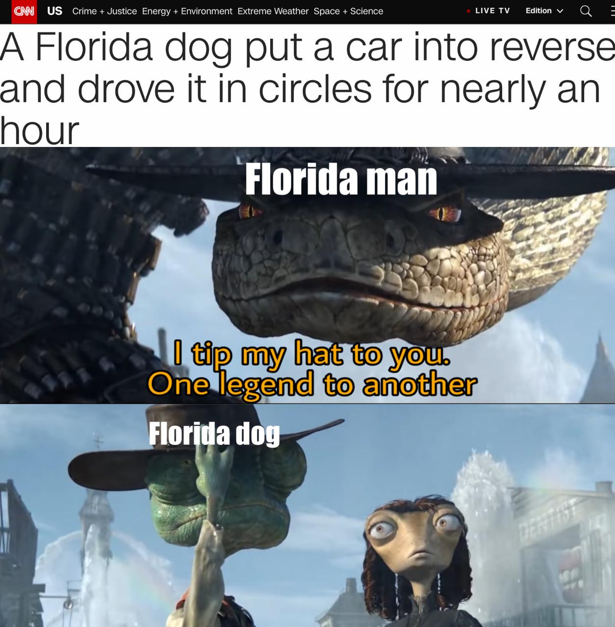 Florida doggo - meme