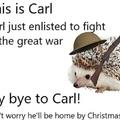 Bye Carl