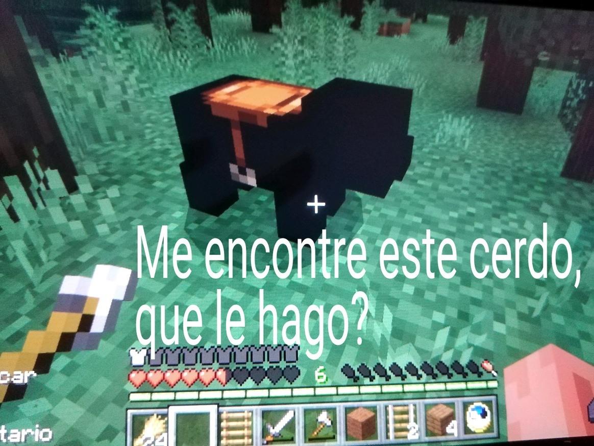 Watafac un cerdo negro - meme