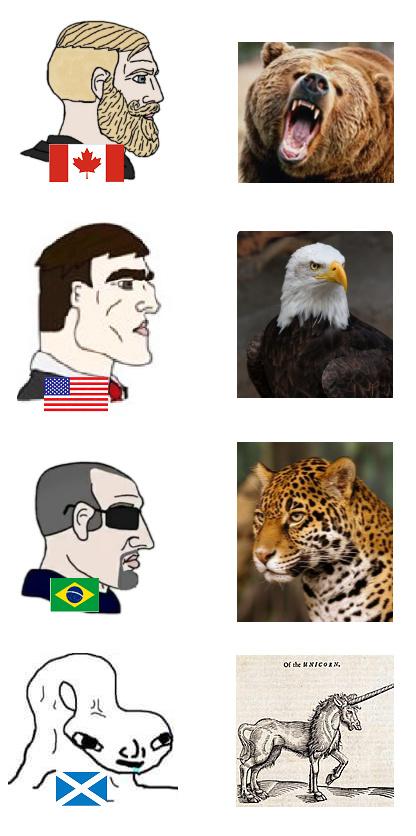 animais de cada país - meme
