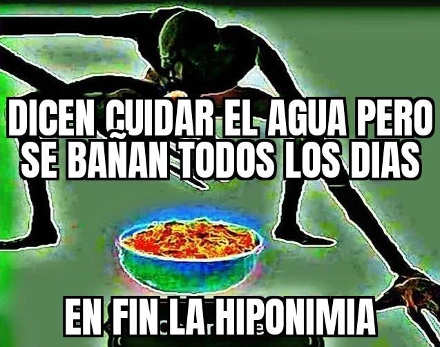 Hiponimia - meme