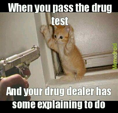 Fake drugs - meme