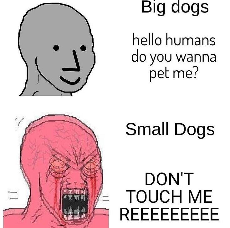 REEEE - meme
