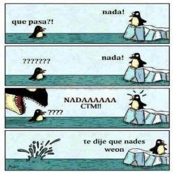 nada!!! - meme