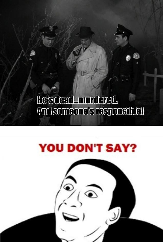 You don't say!? - meme