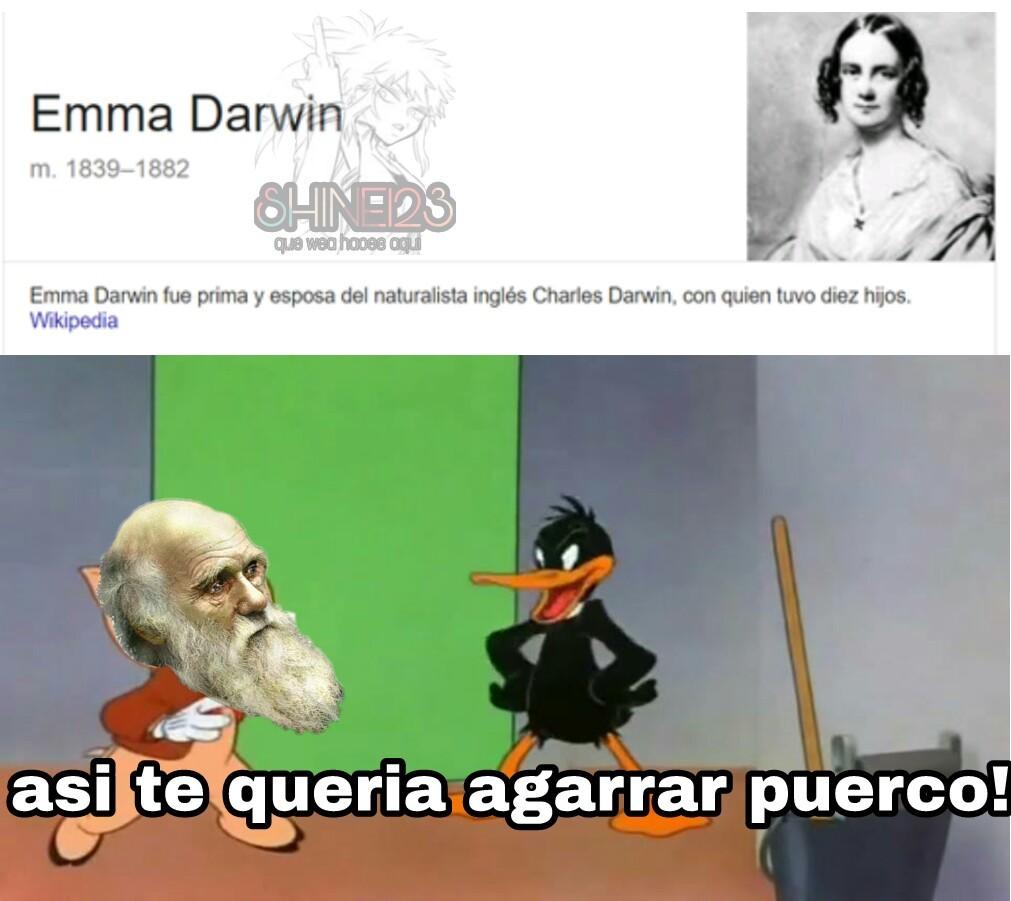 uy el darwin - meme