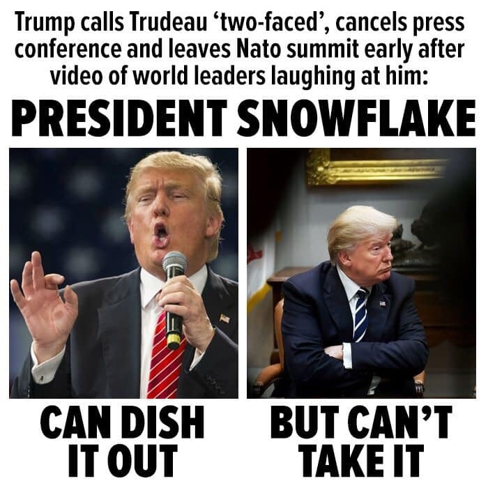 president snowflake - meme