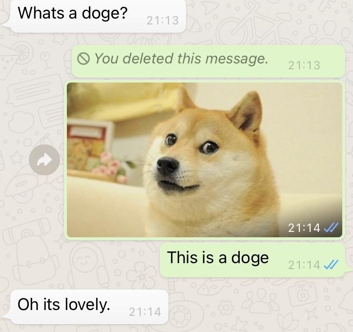 I started to explain, but then I chose lovely - meme